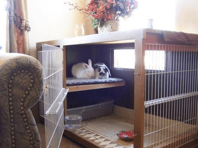 Клетка для декоративных кроликов своими руками с