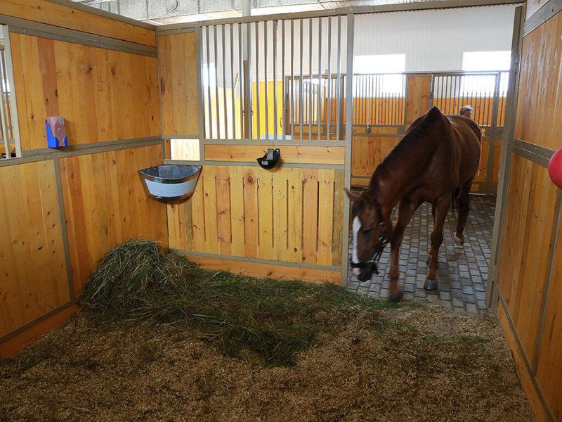 Денники для лошадей своими руками 382
