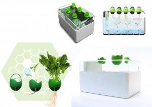 Посадка растений в систему