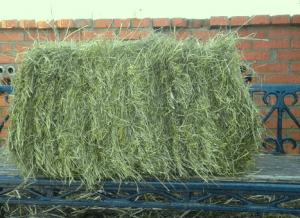 Тюк сена для коз