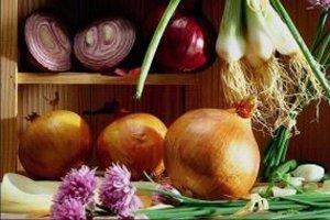 Король корнеплодов лук: польза и вред для здоровья