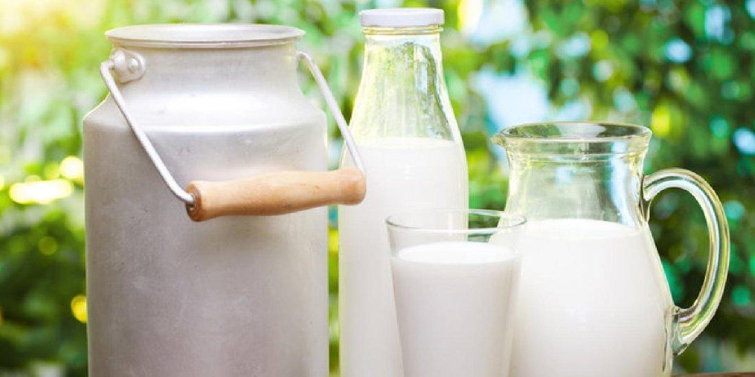 Породы коз молочных без запаха молока, как выбрать козу