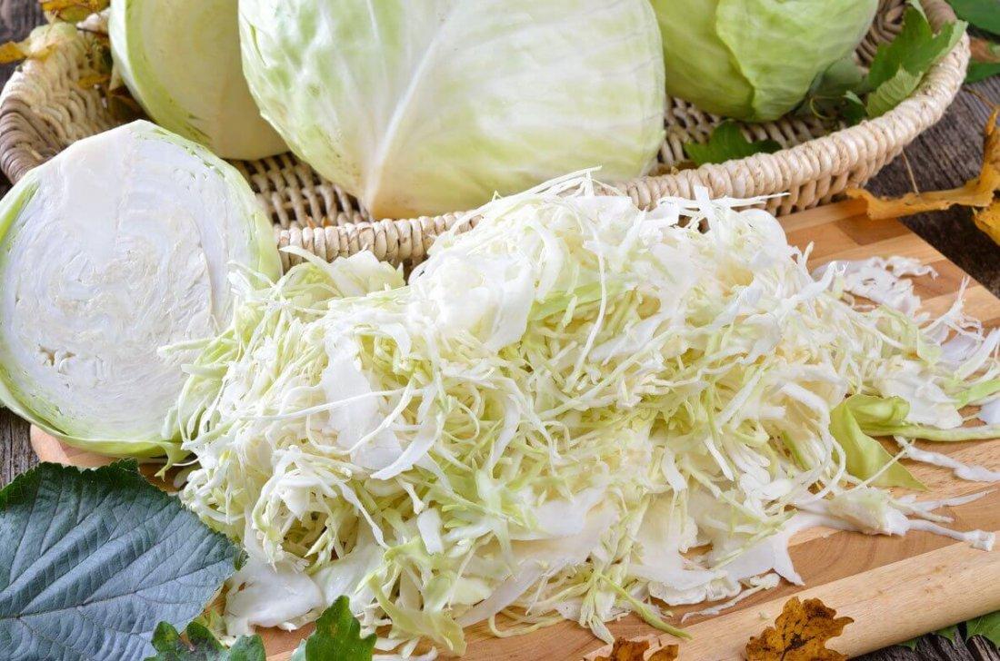 Польза белокачанной капусты