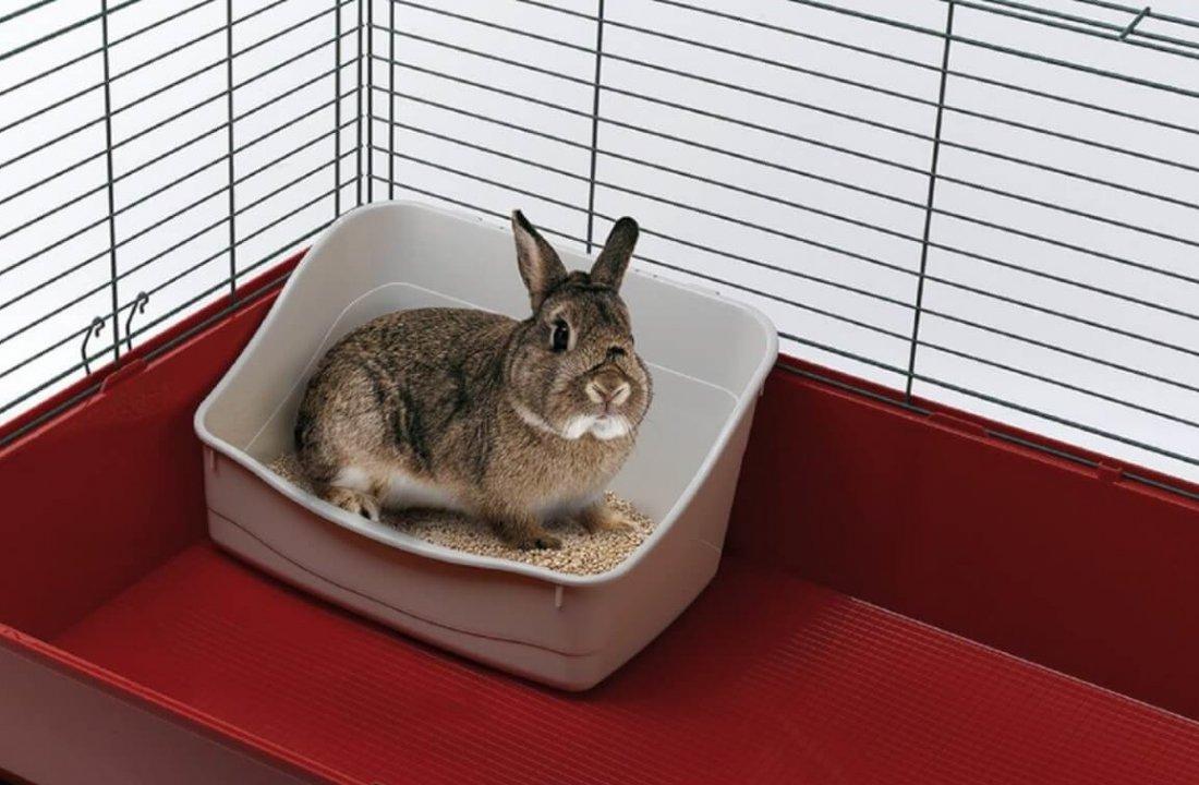 Туалет для кролика