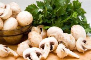 Польза грибов для организма