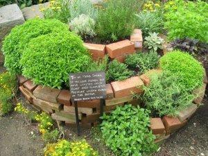 Полезная трава на огороде: заготавливаем травы
