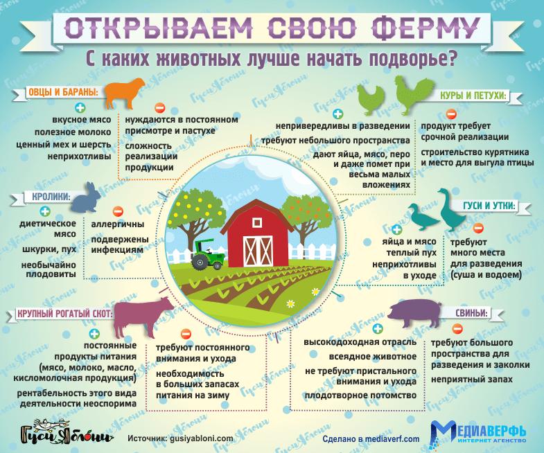 Открываем свою ферму