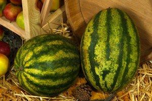 Хранение арбуза в соломе