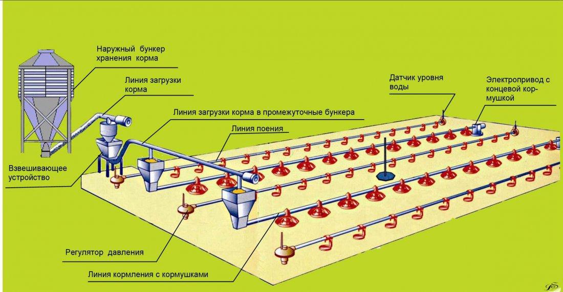 Оборудование для напольного выращивания