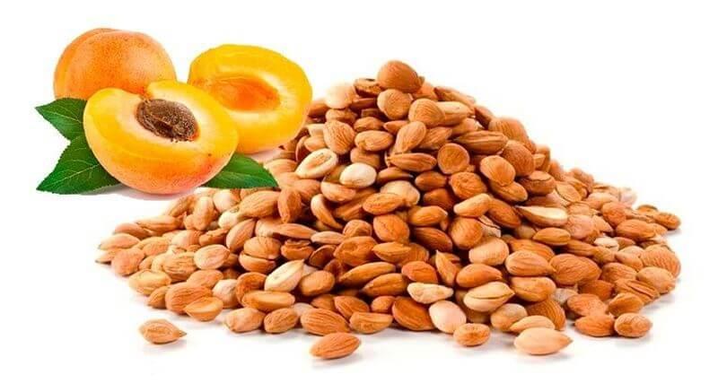 Плоды абрикоса и ядра косточек