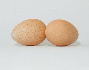 Диетическое яйцо цесарки