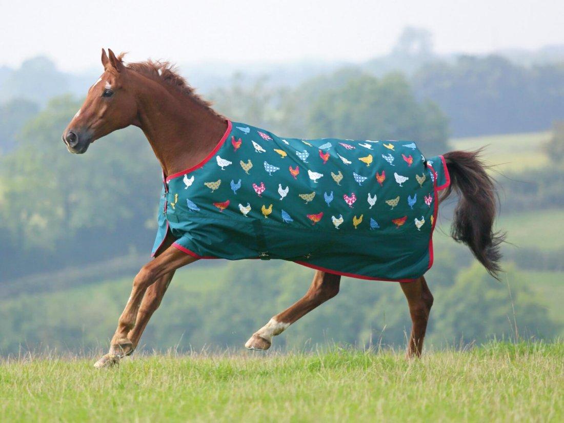 Лошадь в попоне