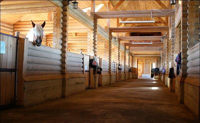 Обустройство конюшни в конном клубе