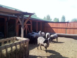 Овчарня с загоном