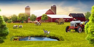 Оформление крестьянского хозяйства
