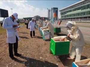 Лучший пчеловод России