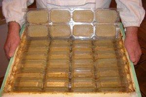 Сотовые рамки для меда своими руками и другой инвентарь