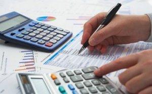 Расходы и доходы павлиньего бизнеса