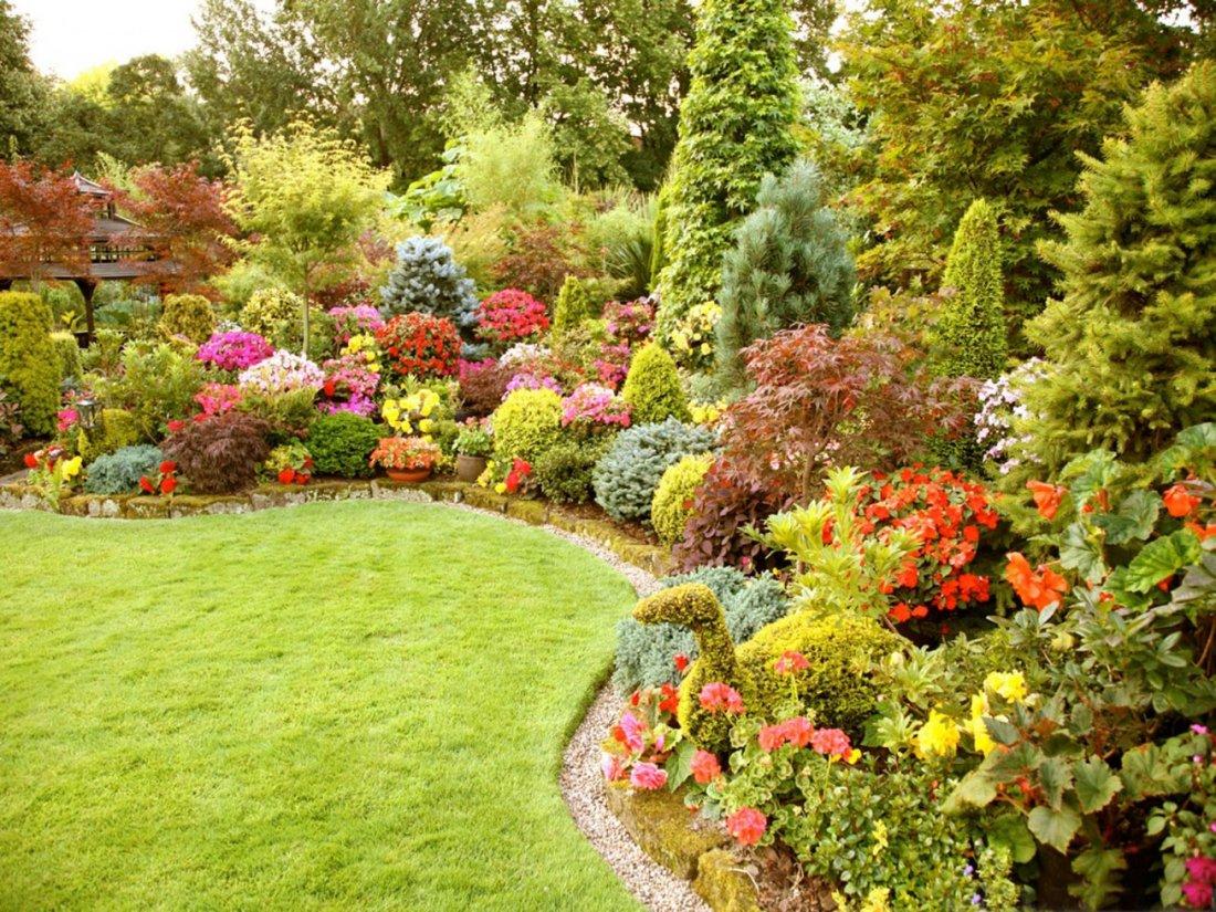 Разноцветье деокративного сада