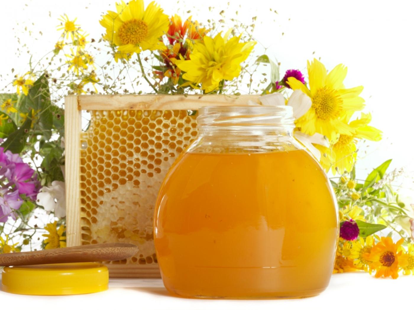 Основные полезные свойства цветочного меда