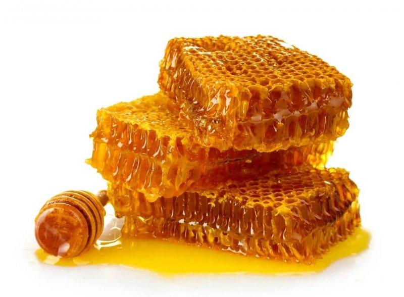 Чем полезны пчелиные соты для здоровья