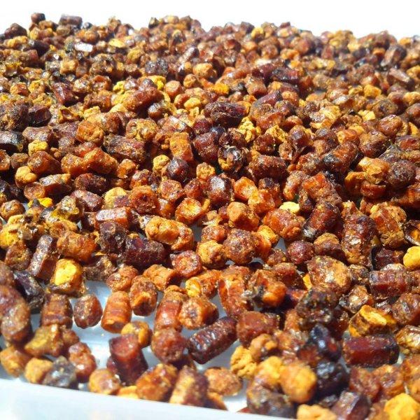 Перга - продукт пчеловодства