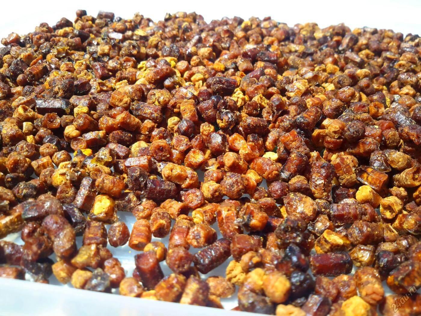 Лечебные свойства пчелиной перги и рекомендации по применению