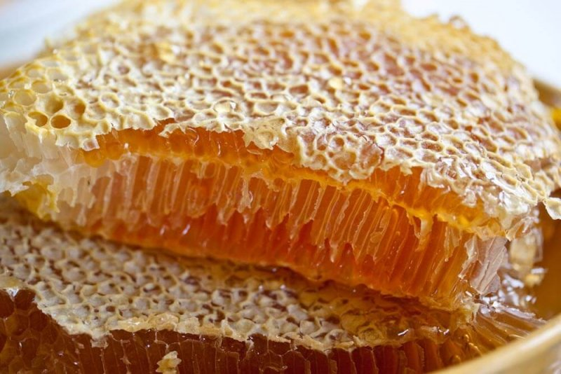 Все самое важное о том, как употреблять мед в сотах