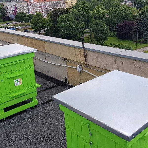Ульи на крыше дома