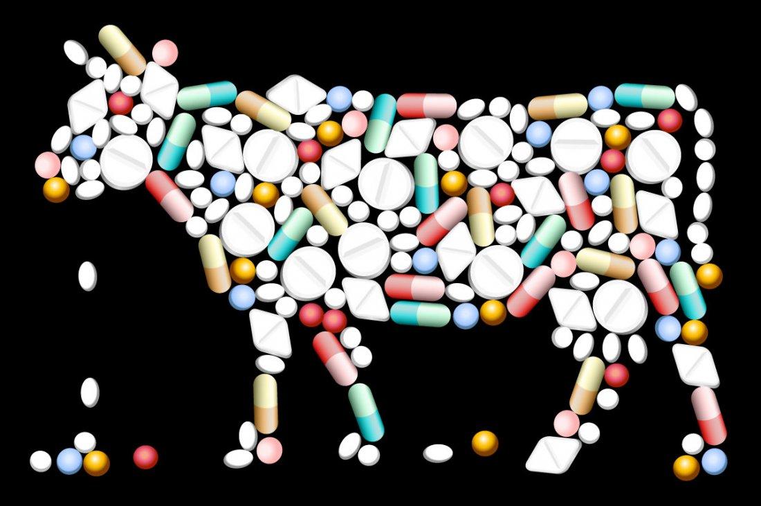 Антибиотики и гормоны роста