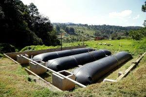 Биогазовые установки для фермерских хозяйств: цена, комплектация
