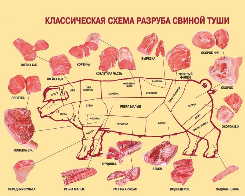 свинина по частям