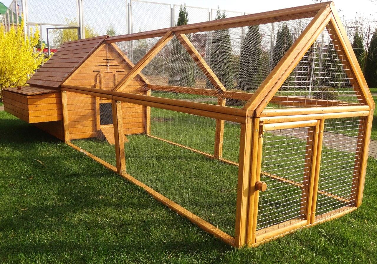 Как построить птичник: комфортное жилье для кур