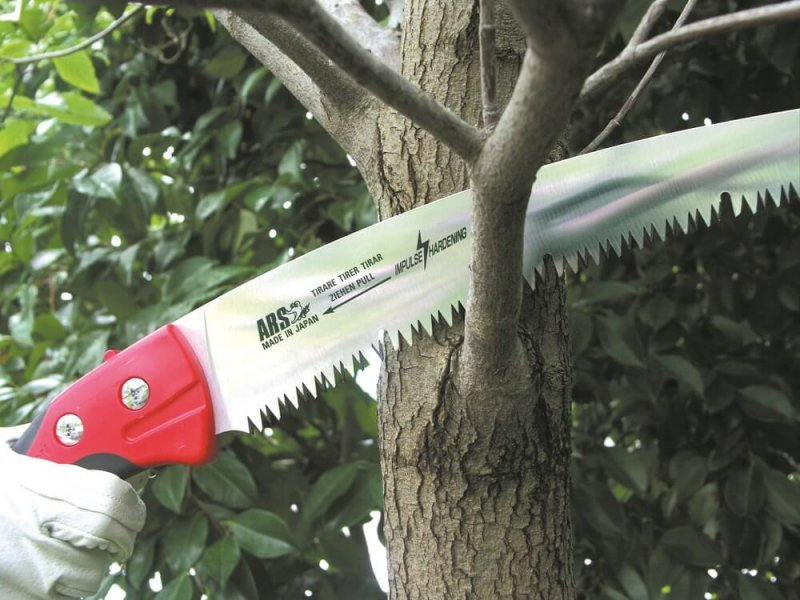 Пила для обрезки деревьев