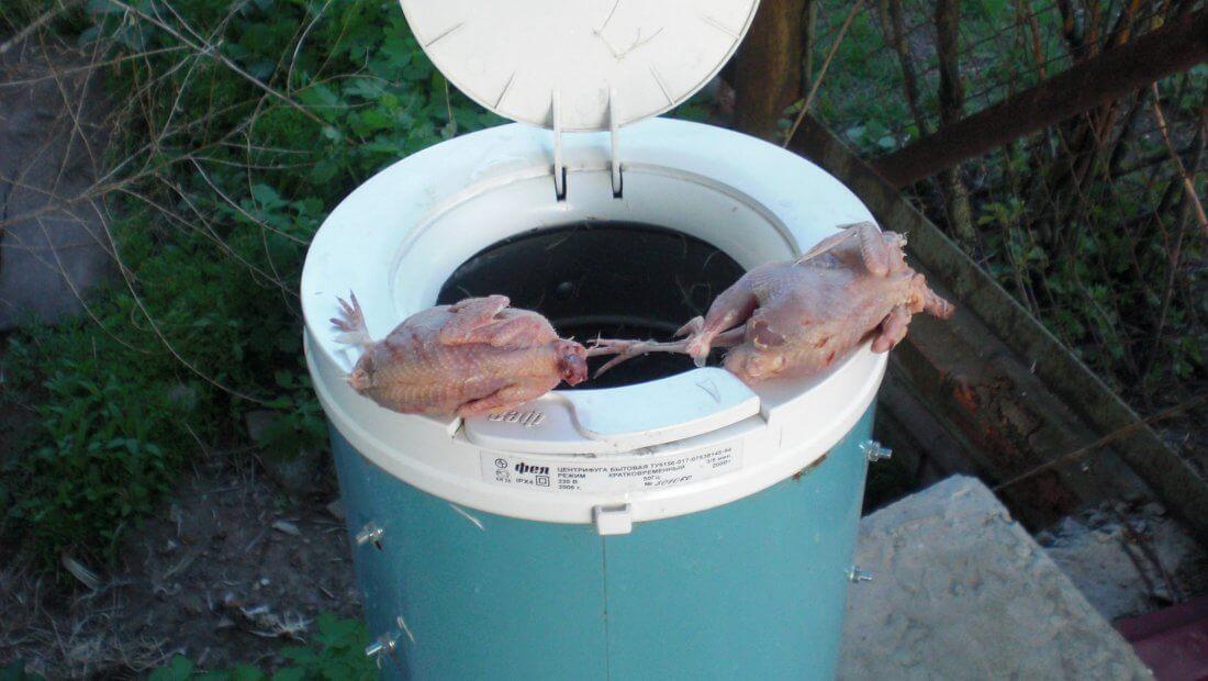 Аппарат для ощипывания птицы из центрифуги