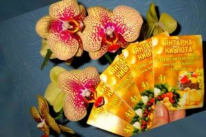 Польза янтарной кислоты для орхидей